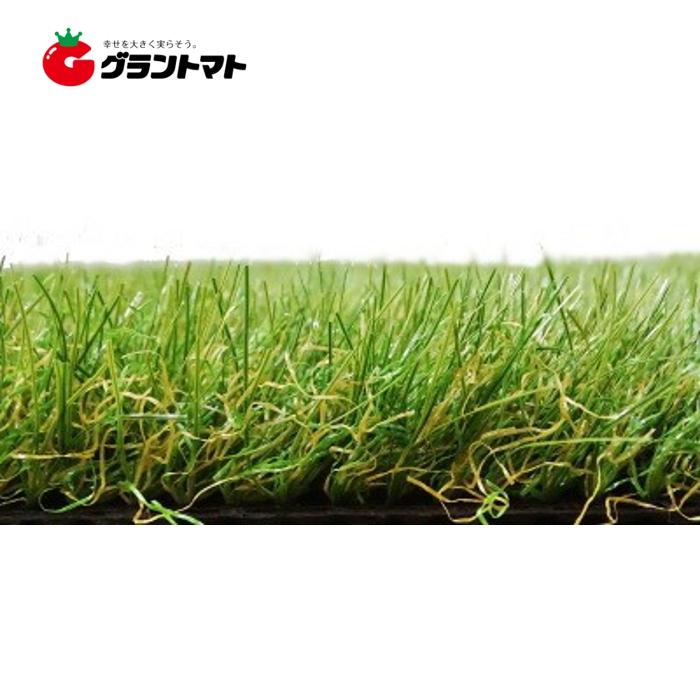 リアル人工芝 芝丈30mm 1m×10m SAT-RG1-3010 つや消しタイプ 枯れ葉入り