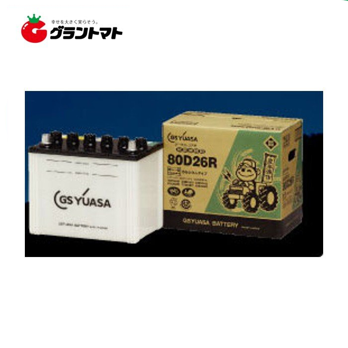 豊年満作バッテリー GYN-30HRY 農業機械用バッテリー GSユアサ