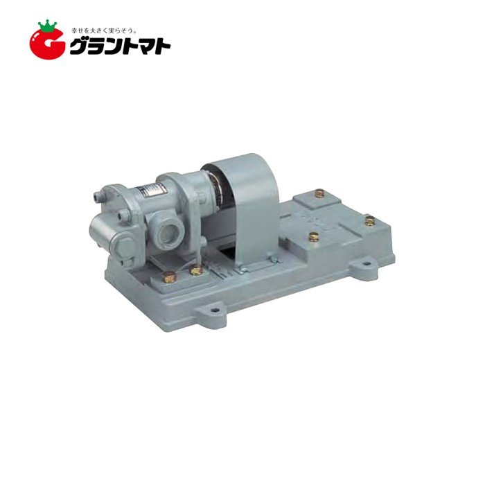GLポンプ GLB-25-3 三相750W用 (モーター別売) 工進【取寄商品】