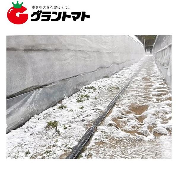 潅水チューブ スミサンスイ R 100m 消雪 住化農業資材【取寄商品】