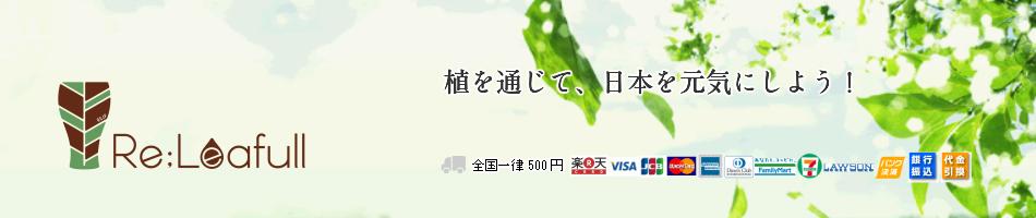 株式会社アグリジャパン:国産フルーツ栽培、販売、農薬等不使用