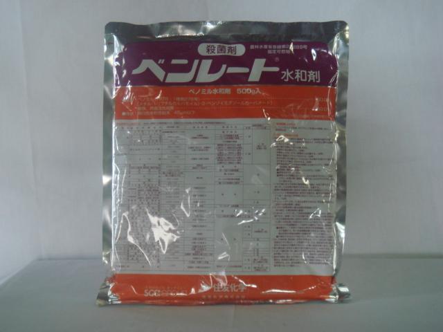 購買 ベンレート水和剤 500g マーケット 殺菌剤