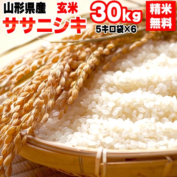 【送料無料】令和元年度産 山形県産 お米ササニシキ 玄米 30kg(5kg×6袋)【白米・無洗米・分づき】