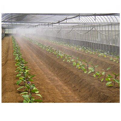 住化農業資材 ミストエース20 ハウスクール04 100m巻 微細噴霧・簡易冷房向け 潅水チューブ 灌水チューブ