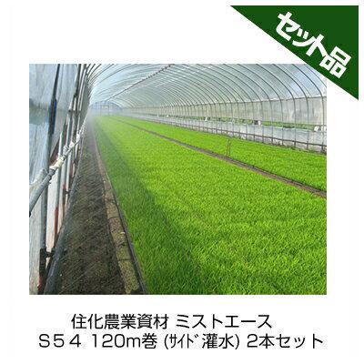 住化農業資材 ミストエース S54 120m巻 (サイド灌水) 2本セット 潅水チューブ 灌水チューブ