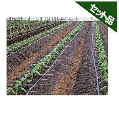 住化農業資材 ネオドリップ 定価 ヨコシタ 04L 200m巻 上 NEW ARRIVAL 10千鳥 5千鳥 下 3本セット 灌水チューブ 潅水チューブ