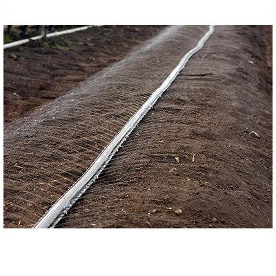 住化農業資材 スミサンスイNEWマルチ100-3 200m巻 潅水チューブ 灌水チューブ