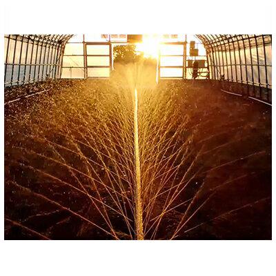 住化農業資材 スミサンスイ Rハウスワイド 120m巻 ~7.2m 潅水チューブ 灌水チューブ