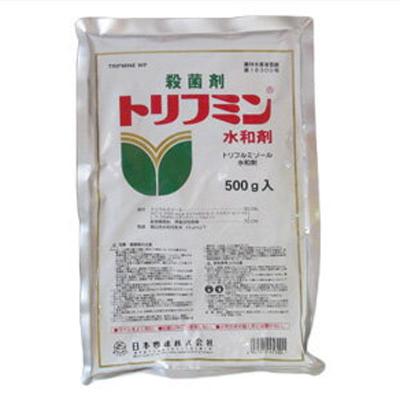 農薬 入手困難 トリフミン水和剤 500g 園芸用 公式 殺菌剤