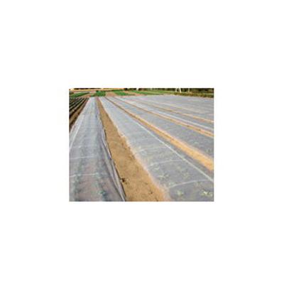 ダイオ化成 ベタがけ・トンネル資材 透明 ベタロン(タフベル後継) 100cm×100m DT-550 開口率45% 4本入【代引不可】 PVA 霜害 保温 換気 不織布 露地