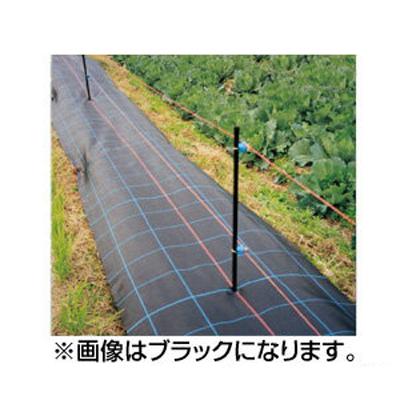 日本ワイドクロス 防草アグリシート BG1515(透水タイプ) 1×100m グリーン
