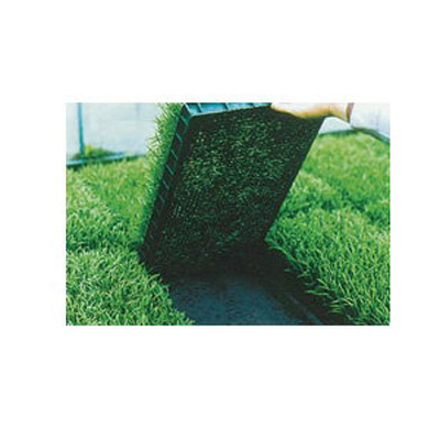 2020年8月19日より順次発送予定 ユニチカ 水稲育苗箱 置床用 不織布 ラブシート ブラック 180cm×50m 5本入 20307BKD
