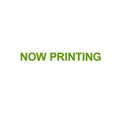 ユニチカ 水稲育苗用 不織布 ラブマット 280mm×580mm 1000枚入 20701FLD