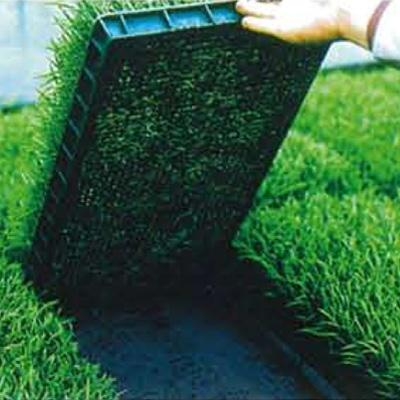 ユニチカ 育苗下敷用 不織布 ラブシート ブラック 180cm×100m 3本入 20507BKD