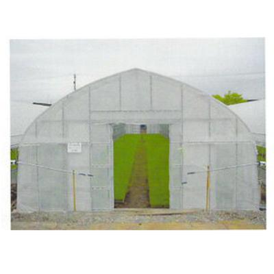 2020年8月19日より順次発送予定 東罐 トーカン 農PO トーカンエース梨地 厚さ0.1mm 巾370cm 100m巻