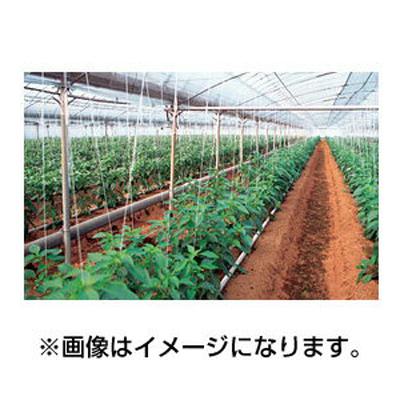 アキレス 農ビ ノンキリーとおしま線 巾270cm 厚さ0.1mm 100m巻