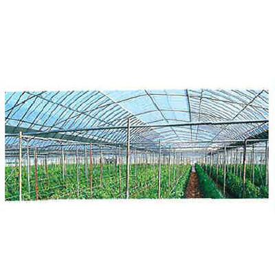 アキレス 農ビ ノンキリーウチバリ 巾230cm 厚さ0.05mm 100m巻