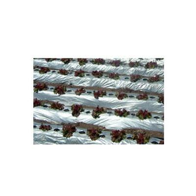 岩谷 イワタニ リバースマルチ 銀黒 0.023mm×180cm×200m 3本入