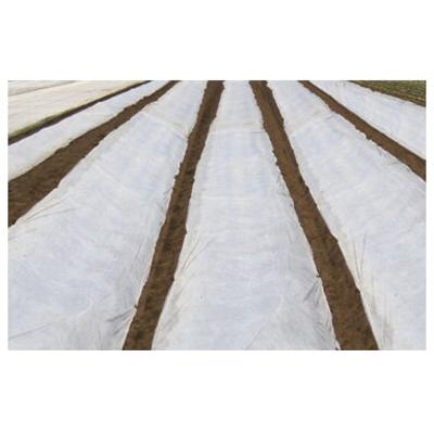 JX日石 不織布 ワリフ(割布) 白 遮光率5% 防虫/保温/通気用 1.5m×100m 5本入【代引不可】