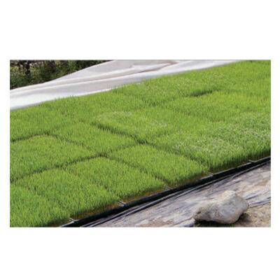 JX日石 不織布 ワリフ(割布) 根切り 育苗下敷用 1.8m×50m【代引不可】