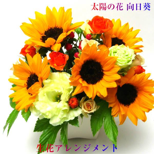 元気なビタミンカラー太陽の花 ヒマワリ 向日葵 お誕生日 お祝い 記念日 ひまわり アレンジメント 花 ギフト 生花 激安超特価 直輸入品激安