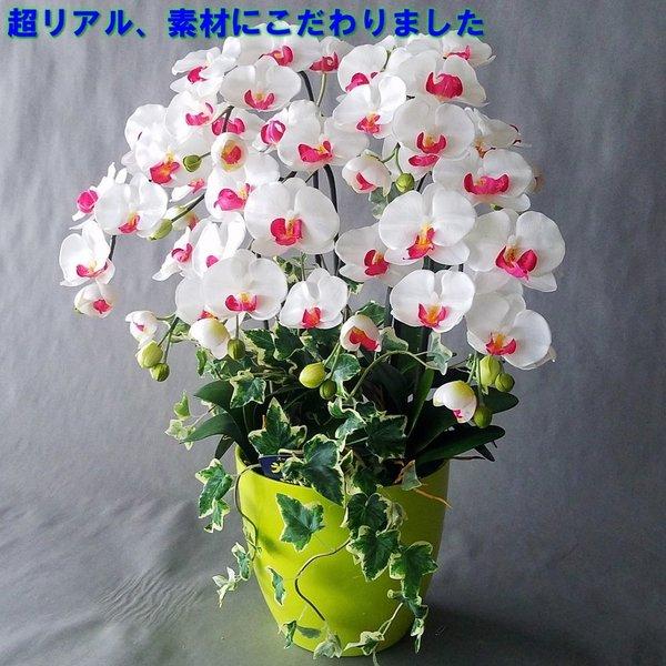 胡蝶蘭M-白赤 5F アウトレットセール 特集 アイビー高さ70cm×巾45cm造花 光触媒 販売