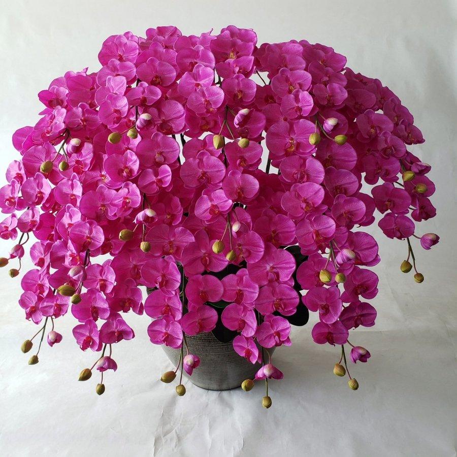 胡蝶蘭2L・16F・赤【高115cm×巾100cm】【造花】【光触媒】