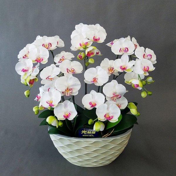 大特価 造花アーティフィシャル胡蝶蘭M 白 光触媒 5本立高さ65cm×巾55cm造花 サービス
