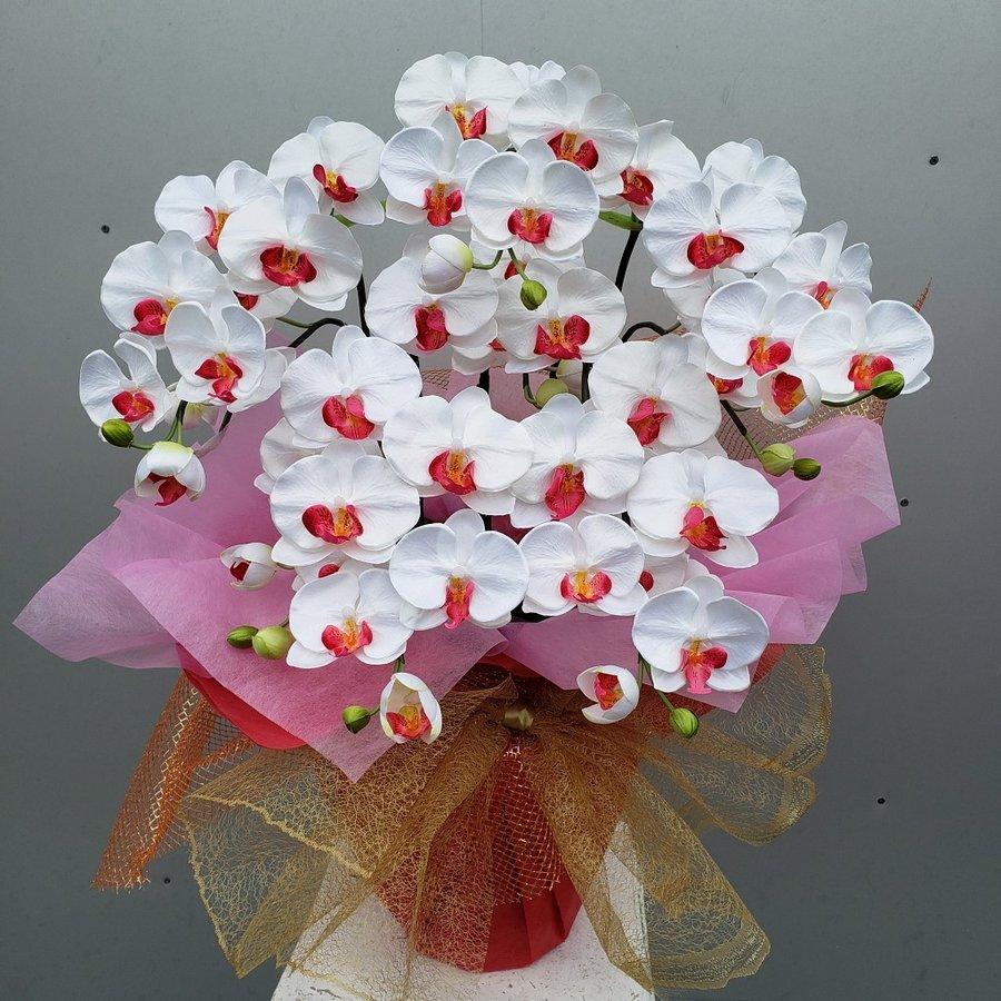 胡蝶蘭M5F 海外限定 春の新作 白赤 高70×幅40 造花
