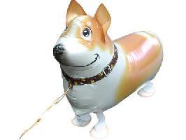 ●お散歩コーギー風船100枚セット