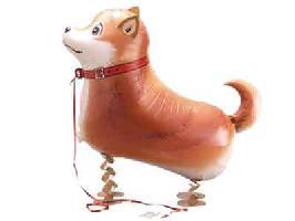 ●お散歩柴犬風船100枚セット