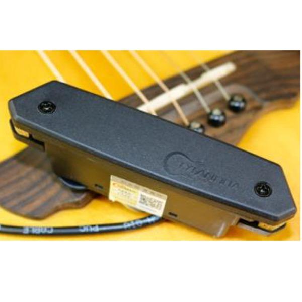 (訳ありセール 格安) 【送料込】SKYSONIC ピックアップ スカイソニック T-901 サウンドホール取付け スカイソニック アコースティックギター用 ピックアップ T-901【smtb-TK】, ヤメグン:2c7752d5 --- zemaite.lt