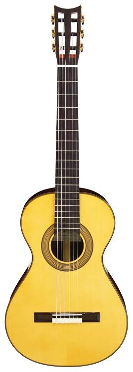 【送料込】【専用ハードケース付】ARIA/アリア A19C-100N 19世紀スタイルギター【smtb-TK】