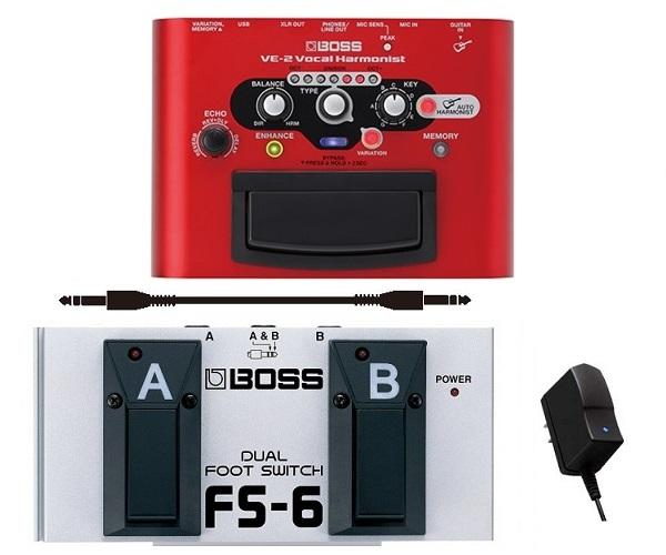 【送料込】【ACアダプター+フットスイッチ+接続ケーブル 付】BOSS ボス VE-2 Vocal Harmonist 美しいハーモニーでボーカルの表現力を高める簡単操作のペダル・エフェクト【smtb-TK】