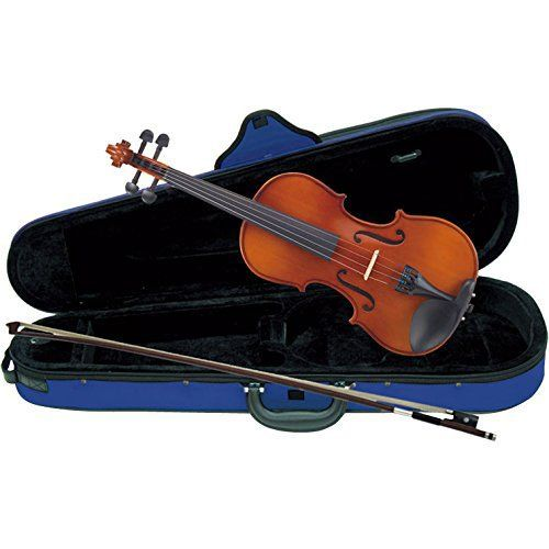 【送料込】Carlo giordano VS-1C バイオリンセット【smtb-TK】