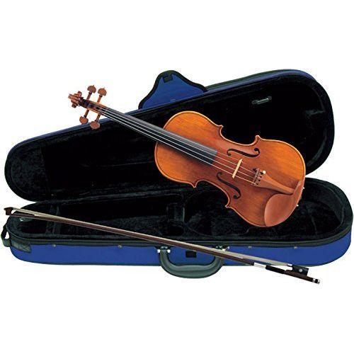 【送料込】Carlo giordano VS-2C バイオリンセット【smtb-TK】