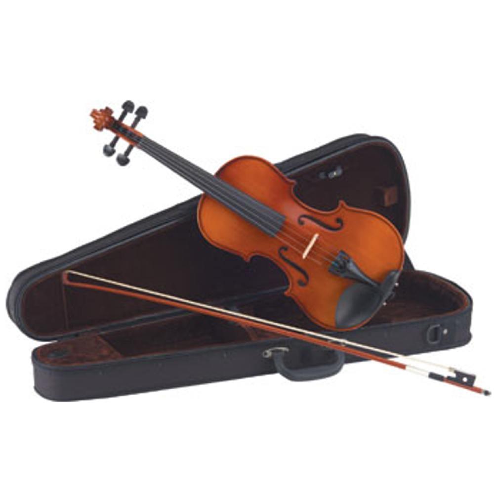 【送料込】Carlo giordano VS-1AY バイオリンセット アルファユー弦 仕様【smtb-TK】