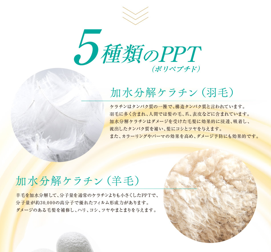 Beauty emulsion INAH Bothe PPT hair emulsion 5 5 (non-silicon hematin ペリセア  リピジュア combination) not to wash away