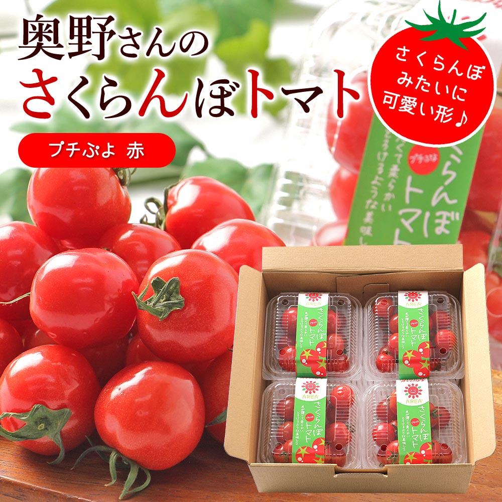 さくらんぼトマト赤