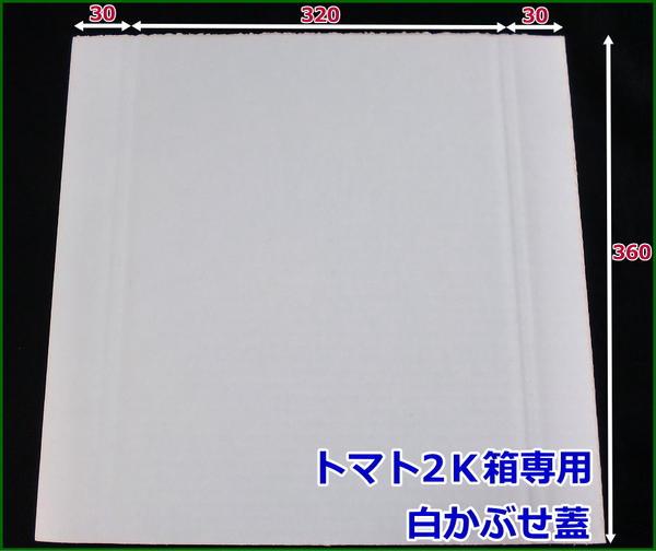 ダンボール板 トマト2k専用 かぶせ蓋(白) 1000枚