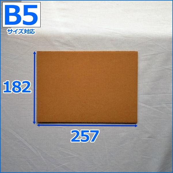 送料無料 ダンボール板 B5 800枚 B5/板ダンボール/当て板/工作/無地/発送用