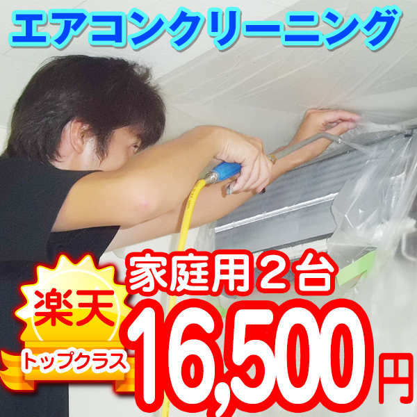 家庭用エアコンクリーニング 2台 東京 神奈川 在庫処分 静岡 作業後3カ月保証付き 千葉 埼玉 着後レビューで 送料無料