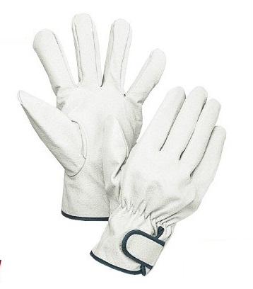 細かい作業に最適 大中産業 35%OFF 豚革手袋 南国クレスト マジック付 新色追加して再販 Lサイズ 10双 113W 皮手袋 豚表革