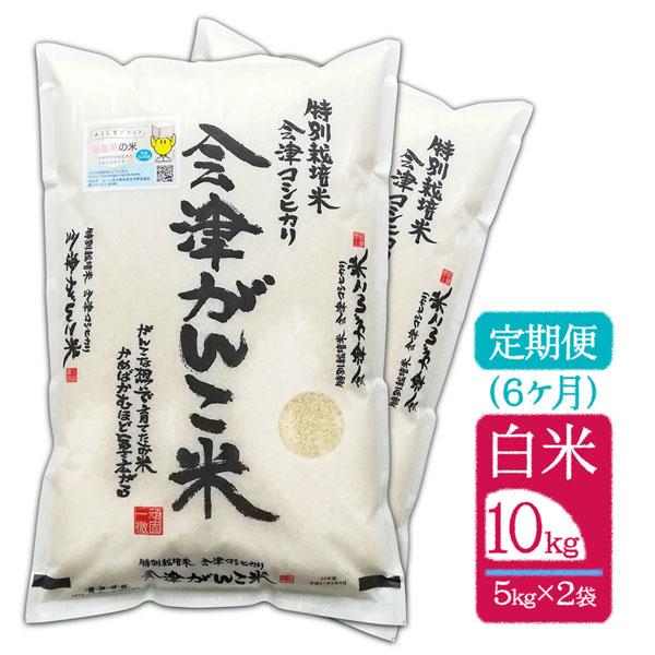 【頒布会(定期便)6ヶ月】【10kg(5kg×2袋) 白米】30年産