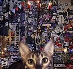 【オリコン加盟店】初回盤A[取]★Blu-ray付■送料無料■BUCK-TICK 4SHM-CD+Blu-ray【CATALOGUE 1987-2016】17/9/20発売【楽ギフ_包装選択】