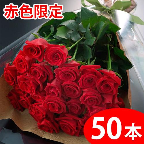 【送料無料】赤いバラの花束ギフト50本