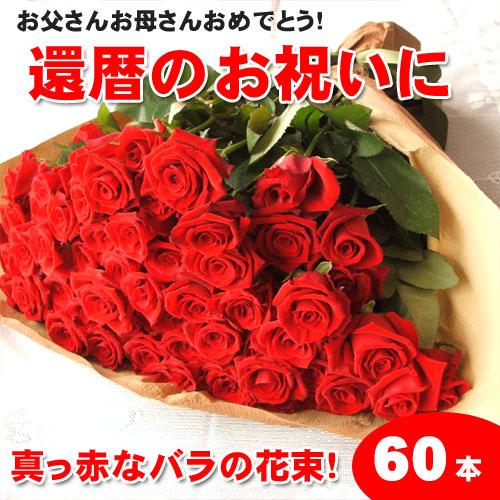 還暦祝いに赤いバラの花束ギフト60本!生産者直送だからバラの鮮度が違う!還暦の赤い薔薇ならこれ 還暦御祝い 花束還暦用 記念日 産地直送の薔薇 生産者直のばら 鮮度の良いバラ【送料無料】