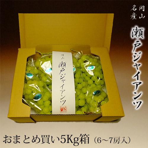岡山県産 瀬戸ジャイアンツ 5キロ箱(5~8房入り)