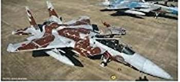 中古 輸入品 未使用 ハセガワ 1 保証 72 イーグル アイテム勢ぞろい アグレッサー2010 F-15DJ