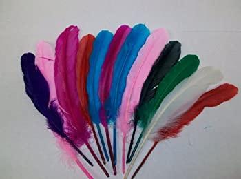 中古 輸入品 人気上昇中 未使用 高額売筋 Creativity Street Quill Chenille Feathers Kraft